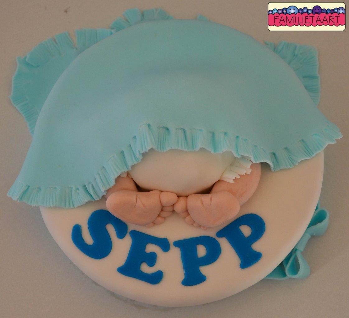 Baby Sepp002